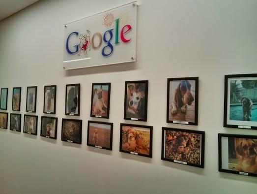 pets wall