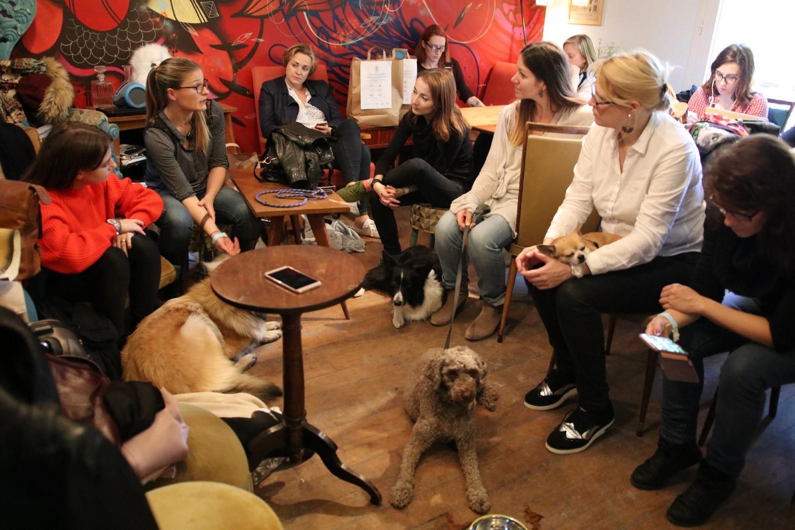 """Place au dialogue dans le salon de """"chien"""" duPavillon - coworking"""