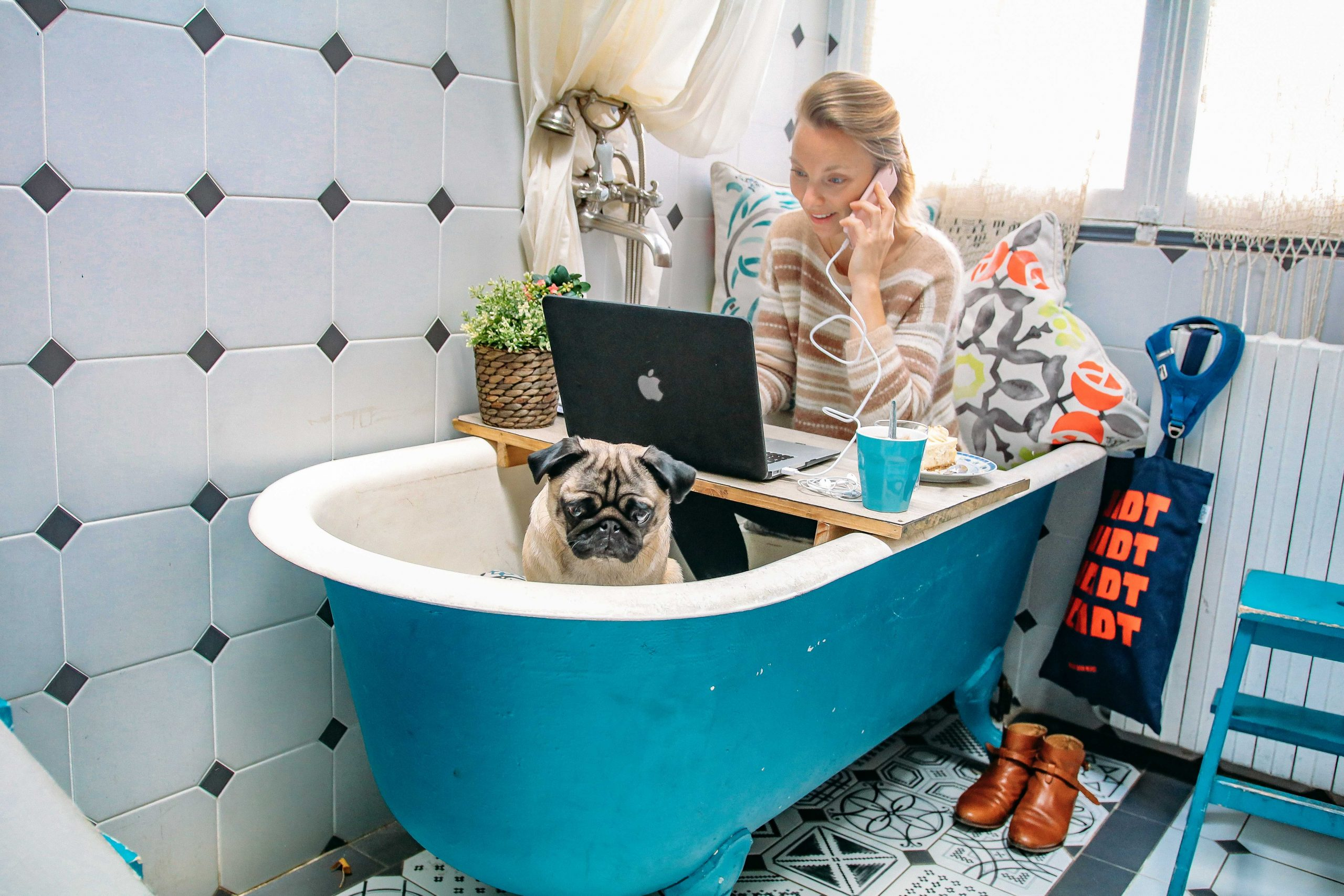 Events Pets@Work par OfficeRiders