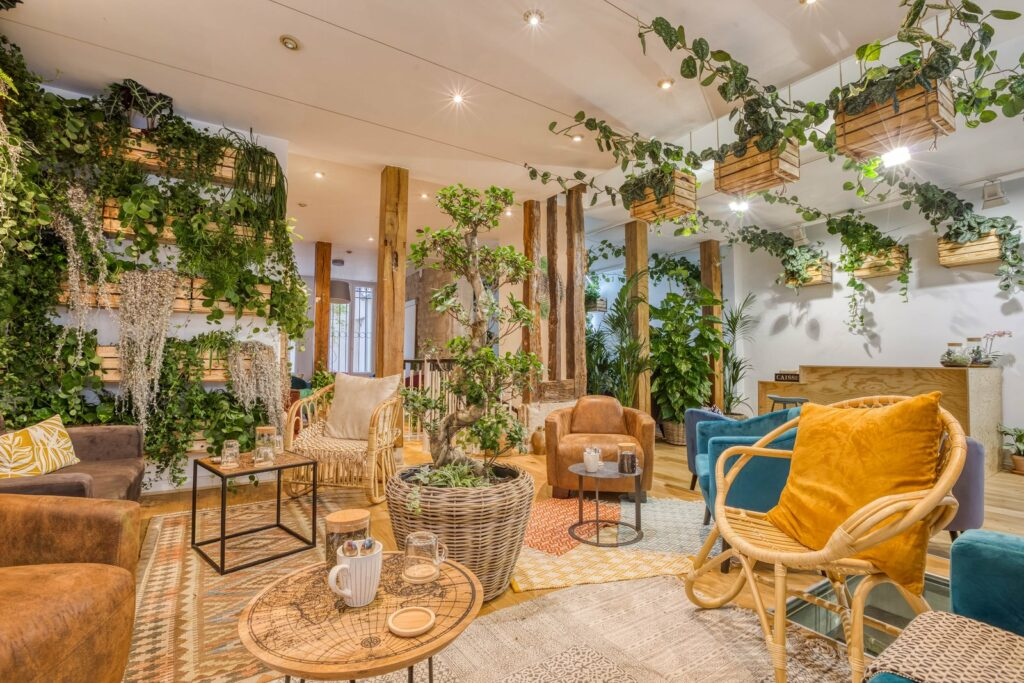 espace végétalisé avec plantes grimpantes et fauteuils en bois